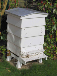 Traditional Beehive   Bee Hives
